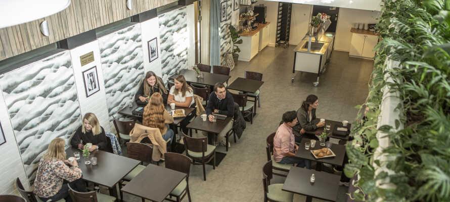 Hotellets store fellesområde innbyr til avslapning med en kopp kaffe og familiehygge.