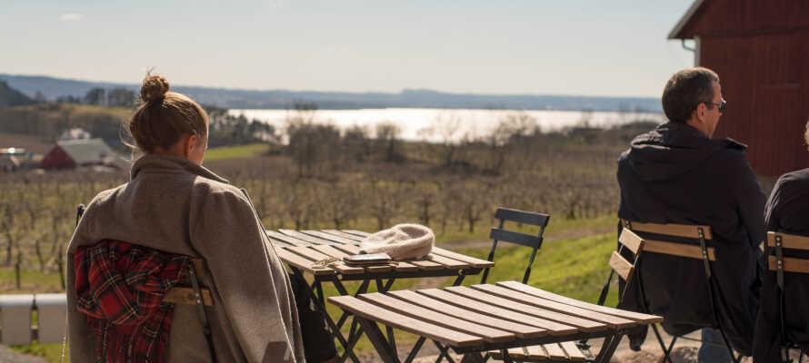 Andra trevliga utflyktsmål är fruktodlingarna i Kaxholmen, gårdscaféer och utsiktsplatserna Vista kulle och Tegnértornet.