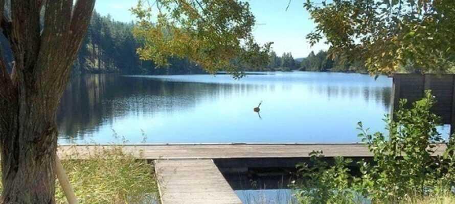 Villa Gladtjärn har en fantastisk beliggenhet rett ved innsjøen 'Barken', i sørlige Dalarna