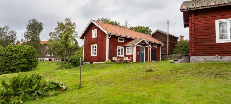 Upplev magiska Dalarna, dess grönskande natur, fina vinterlandskap och röda charmiga byggnader.