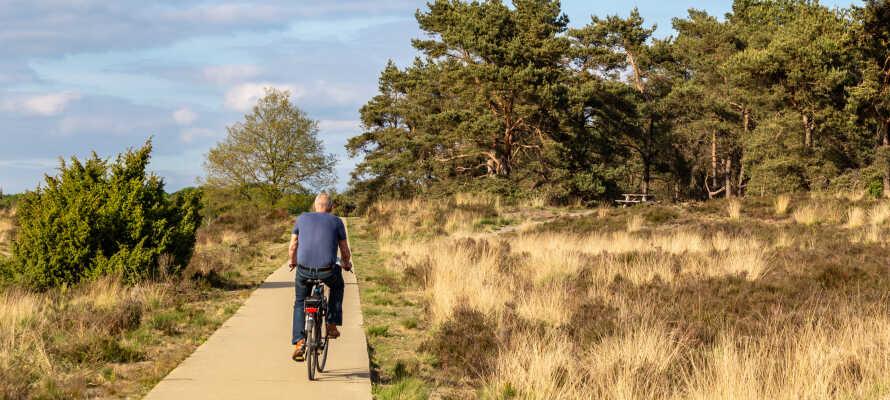 Lej en cykel og tag på opdagelse i Veluwe Nationalparken blandt tulipaner og smuk natur.