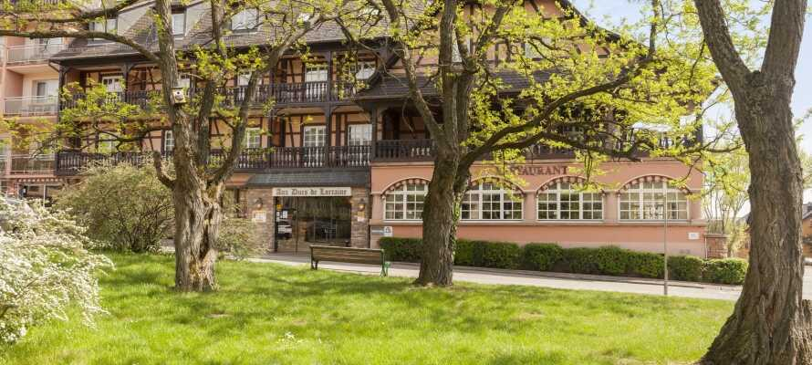 Hotel Munsch Alsace har en skøn beliggenhed i hjertet af vinmarkerne i Alsace.