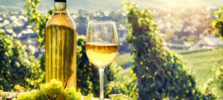 Flere af de lokale vinbønder tilbyder guidede ture med vinsmagning i kælderen.