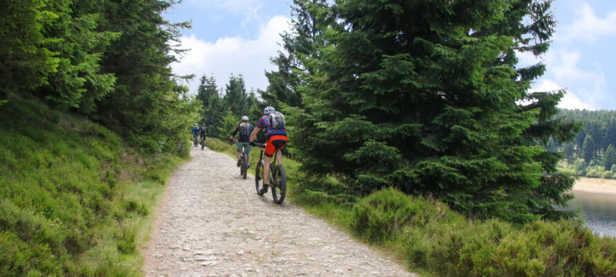 Det gå flere mountainbike-ruter omkring hotellet og i naturparken i Harzen.