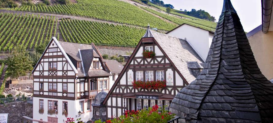 Nyt en avslappende ferie med fantastisk natur og fantastisk vin i historiske omgivelser i den UNESCO-listede Rhindal.