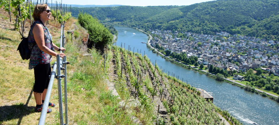 Vom Hotel aus haben Sie die Möglichkeit, die schönen Weinlandschaften und die historische Stadt Koblenz zu erkunden.