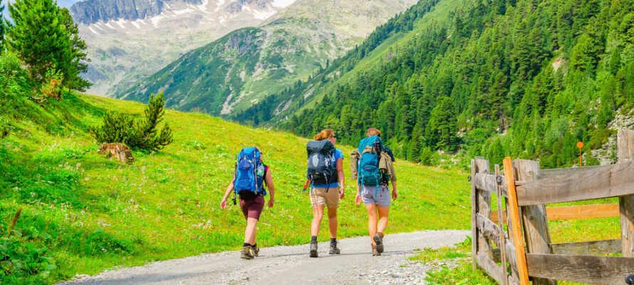 Mere end 300 km. vandrestier omkring Wildscönau byder på stor variation til vandreferien i Tyrol