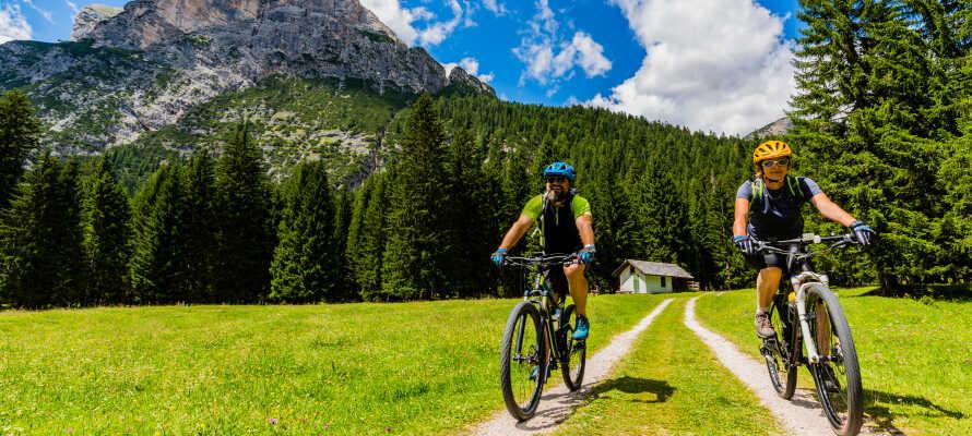 Hotellet tilbyder leje af cykler, så I let kommer ud på opdagelse i området på to hjul.