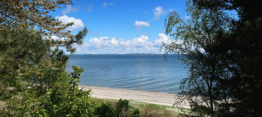 Nyd en strandtur ved en af Limfjordens strande, f.eks. Virksund Strand.