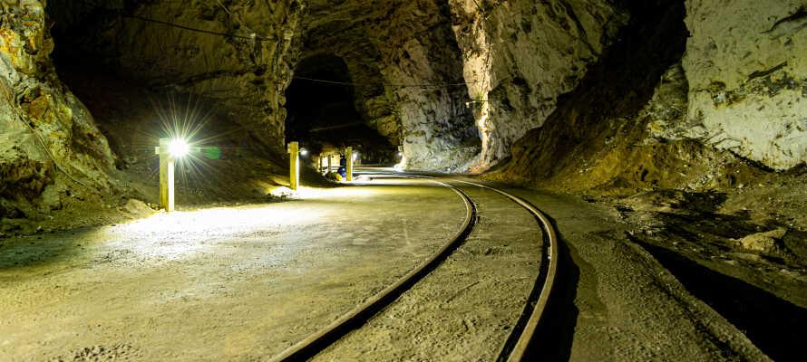 Tag på opdagelse i Mønsted eller Daugbjerg Kalkgruber, som byder på naturhistoriske oplevelser for børn og voksne.
