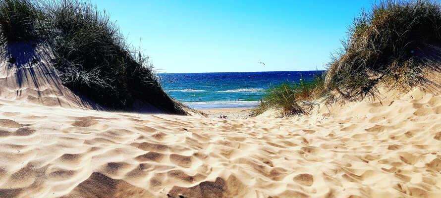 Her bor dere nær Kattegat og vakre Tylösand, som blant annet er kjent for sin 4 kilometer lange sandstrand.