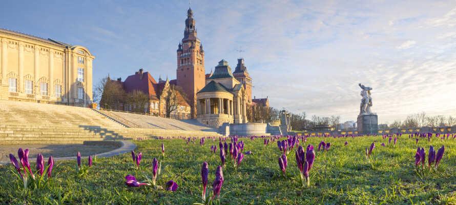 Erleben Sie die historische Hafenstadt Stettin mit ihrem schönen Marktplatz und der Haken-Terrasse über der Odra.