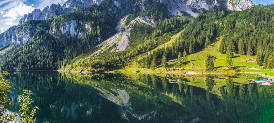 Utforska Dachstein Gletscherwelt som är en av områdets största naturupplevelser.