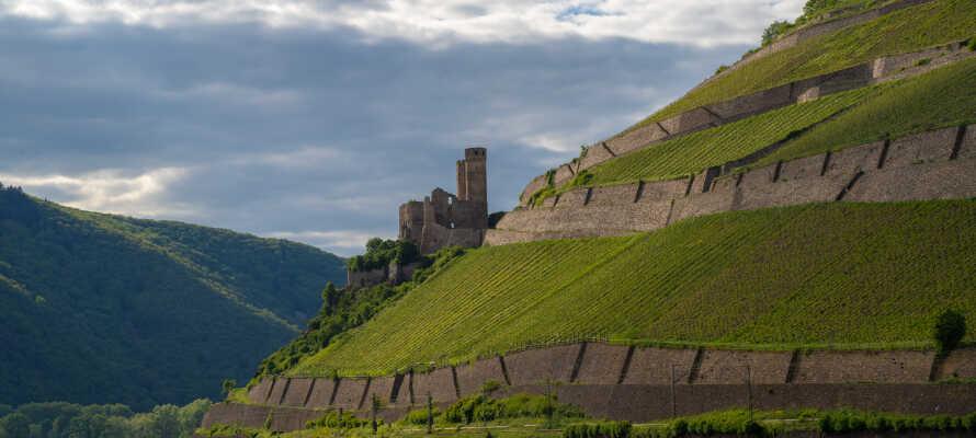 Den UNESCO-listade regionen Rhendalen bjuder på natursköna omgivningar som präglas av vingårdar och slott.