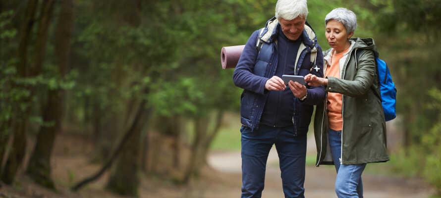 Rothaarsteig bjuder på vandring i olika variationer med något för hela familjen.