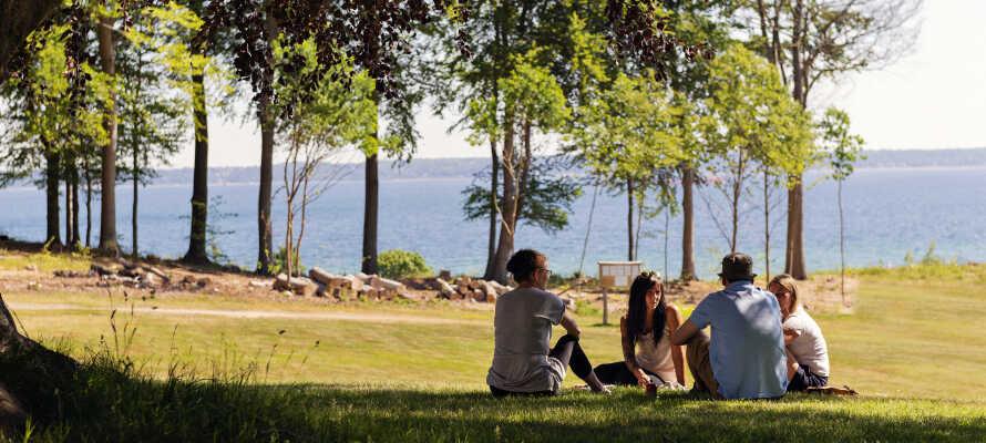 Nyt Højstrupgårds grønne omgivelser med park, strand og et bredt utvalg av spennende aktiviteter.
