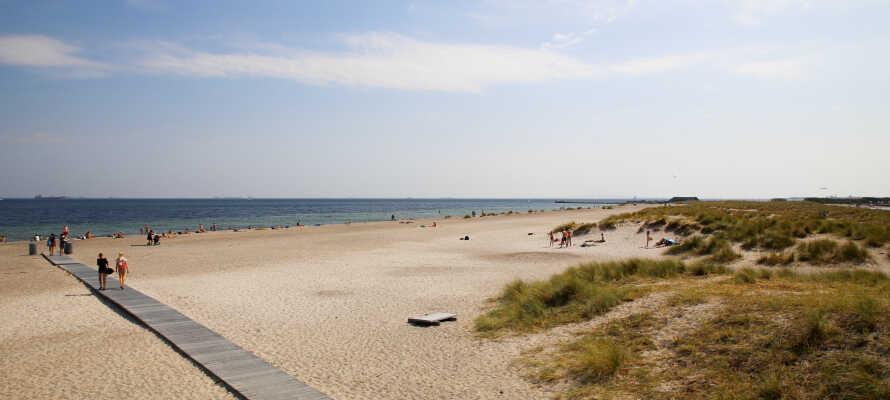 Lige i nærheden af hotellet finder I Amager Strandpark, som summer af liv om sommeren.