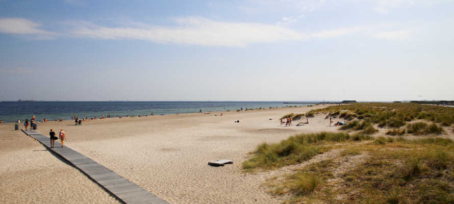 Machen Sie unbedingt einen Strandausflug zum Amager Strandpark.