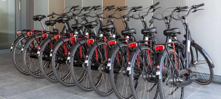 Man kan leie sykler, så dere enkelt kommer dere rundt i omgivelsene.