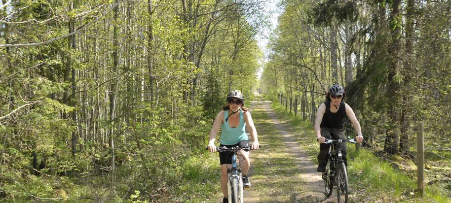Nærområdet byder på adskillige gode cykelruter, perfekt for de som ønsker en aktiv ferie på to hjul.