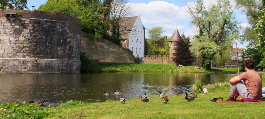 Besuchen Sie Maastricht oder die nahe gelegenen Nationalparks.