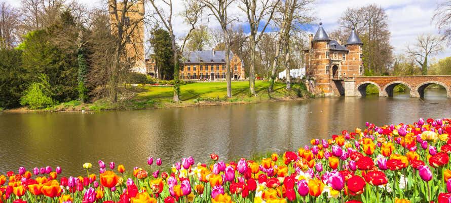 Det idylliskt belägna slottet Kasteel van Groot-Bijgaarden finner ni inom promenadavstånd från hotellet.