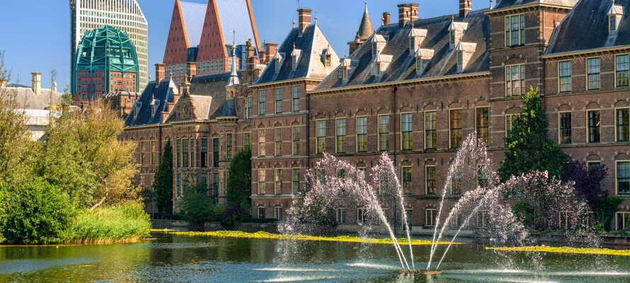 Entdecken Sie die schöne und kulturell reiche Verwaltungsstadt Den Haag.