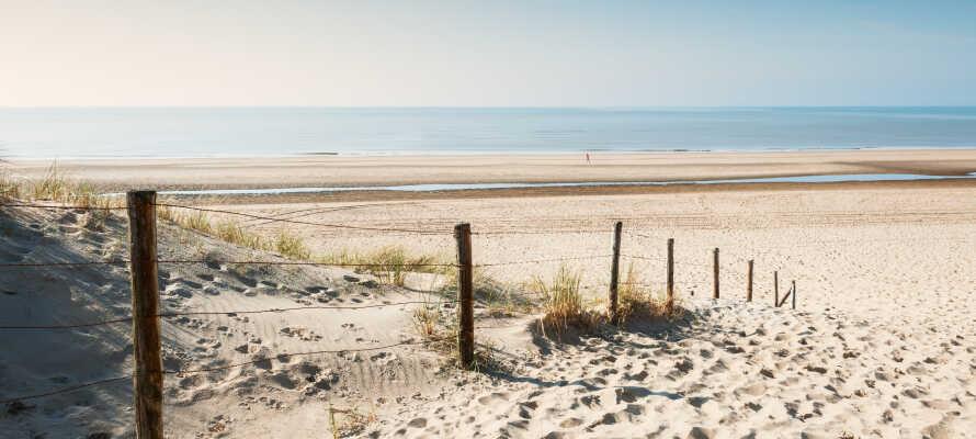 Dere bor nær kysten, og det er derfor helt opplagt å besøke den populære stranden Noordwijk.