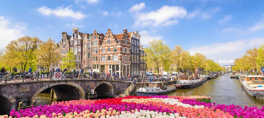 Opplev den sjarmerende hovedstaden i Amsterdam, som ligger innen en kort kjøretur fra hotellet.