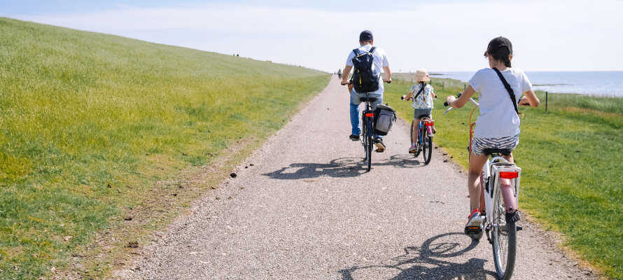 Utforska kusten med långa vandrings- eller cykelturer vid   Scheveningens sanddyner