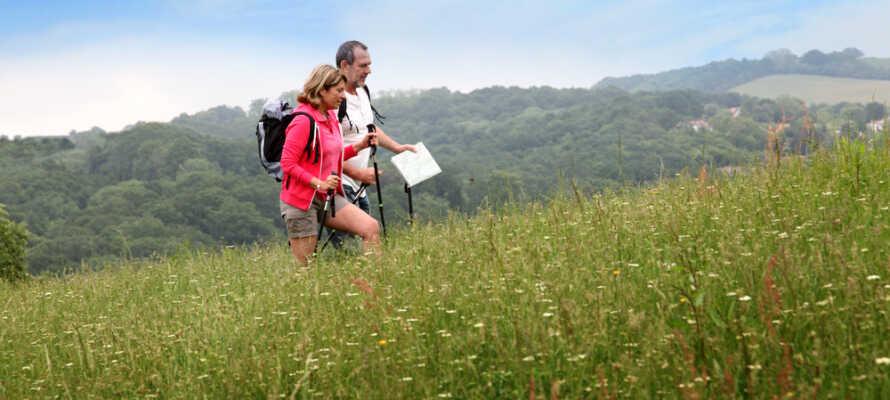 80km Wanderwege rund um Pleystein bieten Abwechslung für Wanderfreunde.