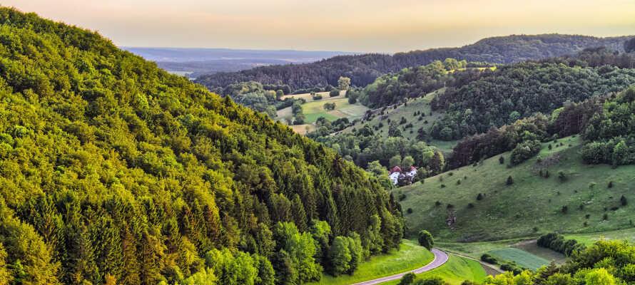 Dere bor midt i den naturskjønne regionen, Franken, med utsikt mot naturen fra hotellets takterrasse.