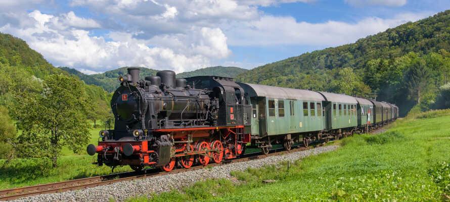Ta det historiske damptoget på en herlig tur gjennom 'det frankiske Sveits'.©DFS_ Florian Fraaß