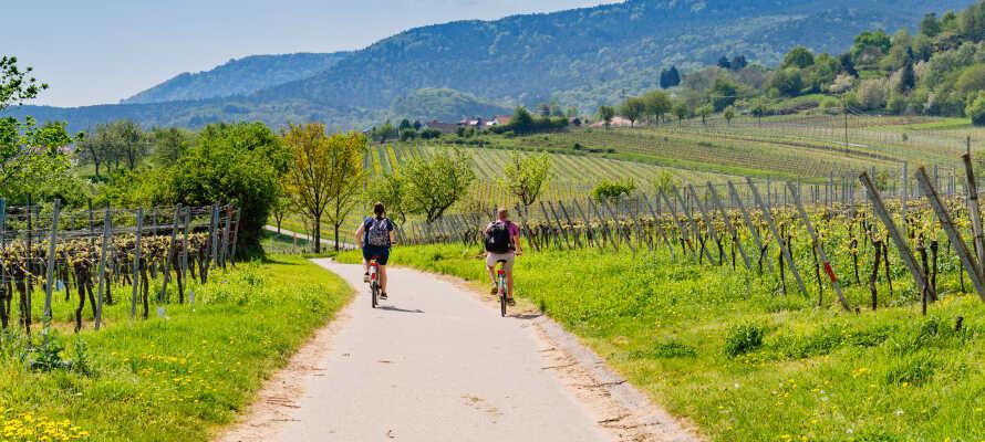 Udforsk naturen i 'Tysklands Toscana', hvor klimaet er mildt og solskinsdagene er mange.