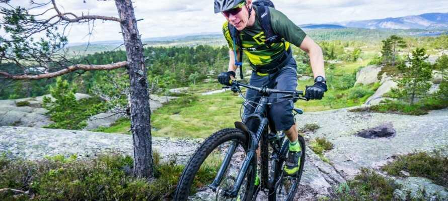 Sykkelløyper for mountain bike