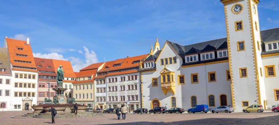 Utforska Freiberg som inte ligger långt från hotellet och har ett historiskt centrum och en spännande silvergruva