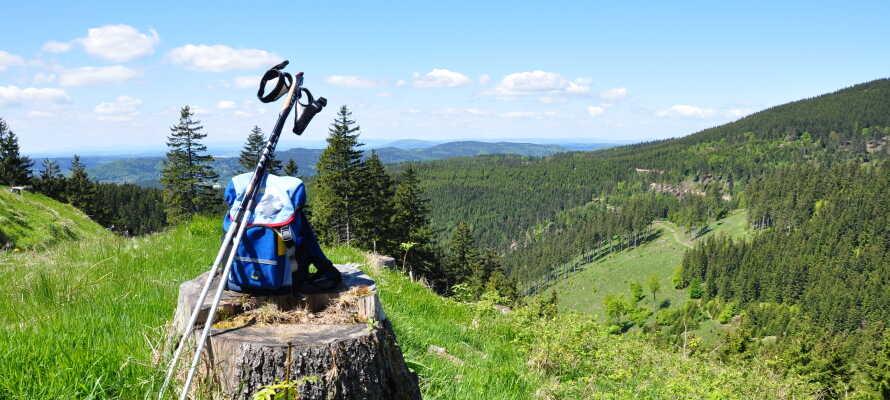 Thüringer Wald är en av Tyskland vackraste regioner och här hittar ni många vandringsleder