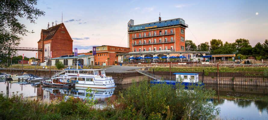 Hotellet ligger direkte ved Elben, midt i UNESCO Biosfærereservatet 'Flusslandschaft Elbe'.