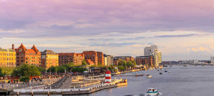 Här kan ni utforska Islands Brygge som är Köpenhamns nya trendiga område