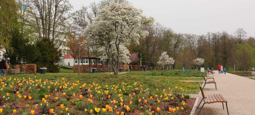 Machen Sie einen Spaziergang in einem der drei Parks in Bad Rappenau.