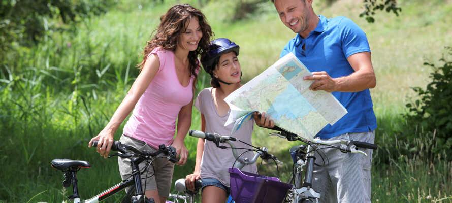 Vogtland-regionen kan by på spennende natur, som kan utforskes på vandre- eller sykkelturer.