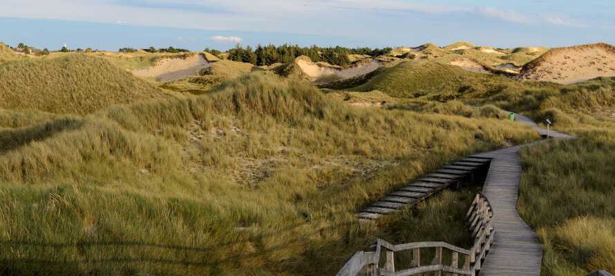 Ideell base for å utforske Wattenmeer nasjonalpark og øyene Föhr, Amrum og Sylt.