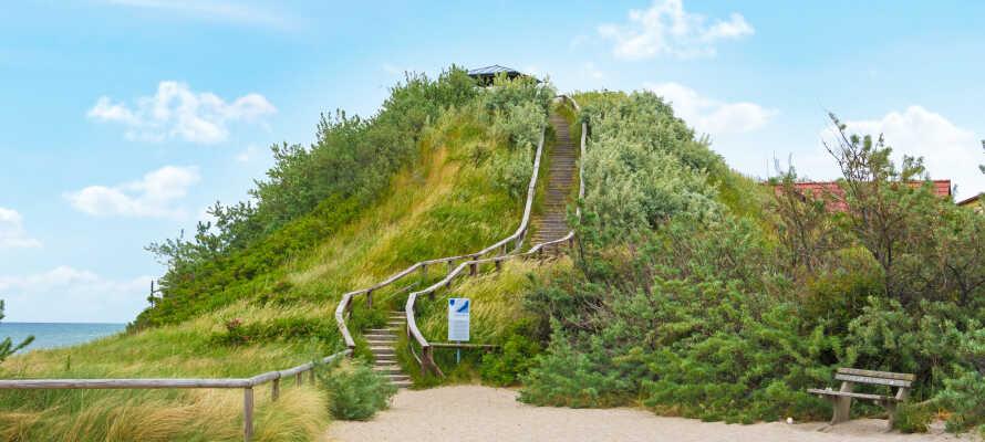 I kort afstand fra hotellet, kan I gå en tur op på bakken, Schmiedeberg, og nyde en herlig panoramaudsigt.