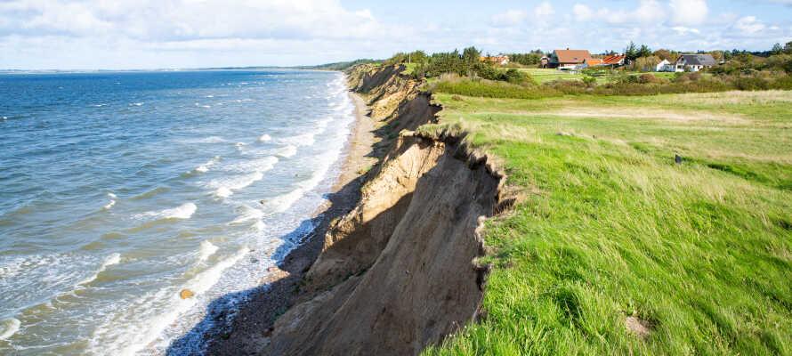 Kør en tur ud til Ertebølle Strand og nyd den fantastiske natur - man kan også være heldig at finde fossiler i klinterne.