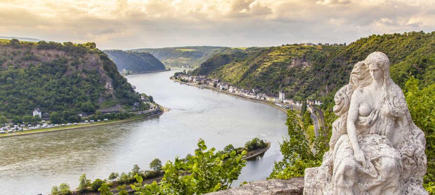 Ta tåget till Loreley och njut av den vackra utsikten över Rhenfloden och den omgivande naturen under resan