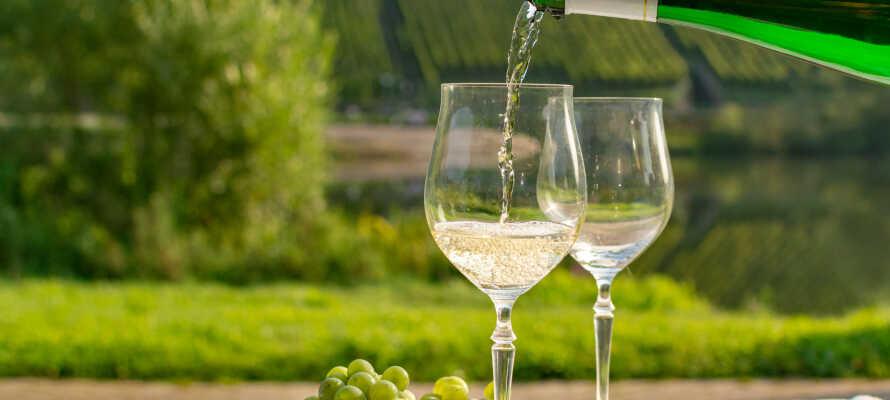Rheinland-Pfalz är ett populärt besöksmål för vinälskare och livsnjutare, upplev det med egna ögon och smaklökar!