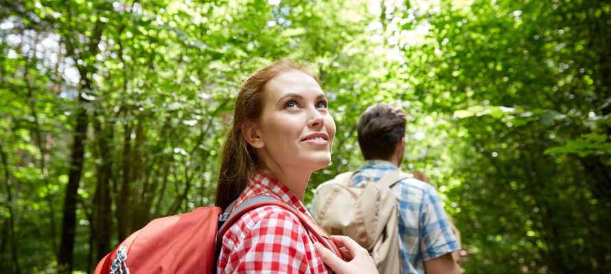 Vandra i den vackra naturen på härliga vandringsstigar som börjar och slutar vid hotellet