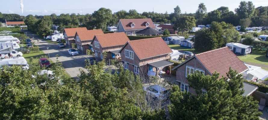 Ribe Camping ble kåret til Danmarks beste campingplass i 2020 og er omgitt av vakker natur.