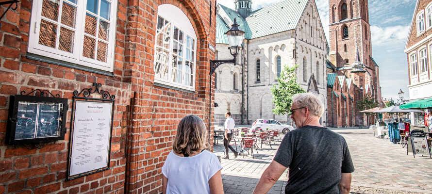 Opplev Danmarks eldste by, Ribe, eller dra på idylliske utflukter i omgivelsene.