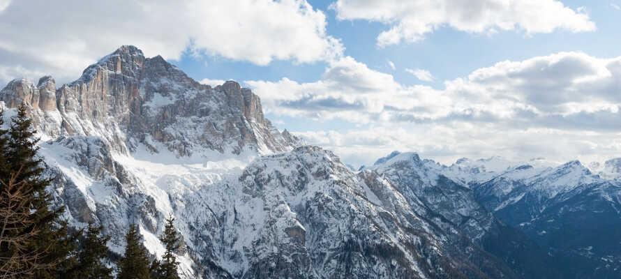 Vom Hotel aus erreichen Sie in kürzester Zeit die schönsten Plätze in Südtirol, z.B. die Dolomiten.